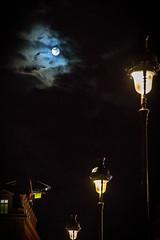 Paris Evening (NathalieSt) Tags: europe france iledefrance paris capitale light lights lumière lumières nikon nikond750 nikonpassion nikonphotography streetlights moon lune fullmoon pleinelune nuage cloud nuages clouds luminaires