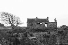 Abandoned house on Inis Ni (Nelleke C) Tags: 2017 inisni letterdyfehouse roundstone abandoned connemara countygalway eiland holiday house huis ierland ireland island landscape landschap vakantie