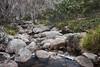 Rock garden, Guthega (Rod Burgess) Tags: guthega kosciuszko nsw kosciuszkonationalpark newsouthwales australia au canon1635f4l canoneos5dmarkiv river creek water cascade