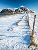 Divided land (Andrew Bloomfield Photography) Tags: lofoten islands andrewbloomfieldphotography landscape norway outdoor xphotographer wwwandrewbloomfieldphotographycouk mountain mountains fence sky bluesky snow distant landscapebeauty scenic