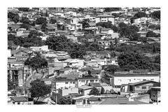 [ Human intervention ] (Marcos Jerlich) Tags: trees houses roofs urban street contrast bw blackandwhite bnw monochrome blancoynegro mono april flickr 7dwf sorocaba brasil américadosul city architecture cityscape canon canont5i canon700d efs55250mm marcosjerlich