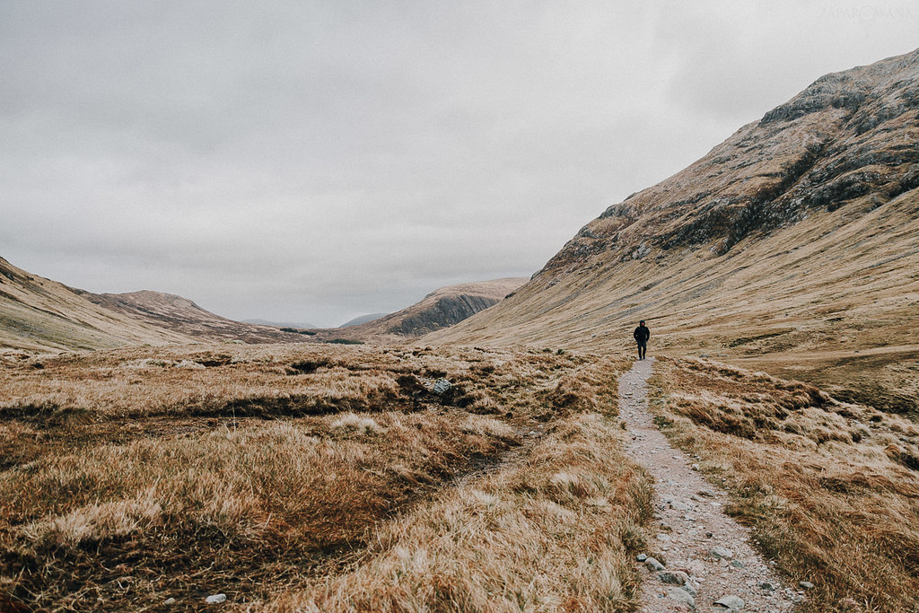 482 - Szkocja - ZAPAROWANA_