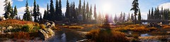 """The beautiful morning sun."" (The Wasteland Survivor) Tags: far cry 5 nature morning sun screenshot panorama colorful grass water tree flower wood forest landscape hope county ubisoft"