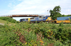 In Vineyard County (craigsanders429) Tags: bortroad csx csxtrains csxeriewestsubdivision bridges intermodaltrains csxstacktrains vineyards