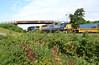 In Vineyard County (craigsanders429) Tags: bortroad csx csxtrains csxeriewestsubdivision bridges intermodaltrains csxstacktrains vineyards