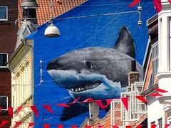 Jaws..... (Jaedde & Sis) Tags: shark mural lamp wire blue challengeyouwinner matchpointchampion mpt648 friendlychallenges pregamewinner gamewinner