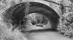 Dunmere Halt (R~P~M) Tags: train railway station abandoned disused halt dunmere cameltrail bridge trackbed cornwall kernow england uk unitedkingdom greatbritain