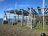 Fisk fish drying racks, Saudarkrokur, Iceland (Travel writer at KristineKStevens.com) Tags: iceland fish fisk fishdrying