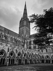 Inner (ancientlives) Tags: salisbury cathedral salisburycathedral spire tower cloister innercloister christian church wiltshire england uk europe travel trips friday june 2018 spring blackandwhite bw mono monochrome architecture city
