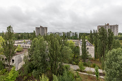 Lush green (Lesley Langeveld) Tags: urban exploration urbex abandoned chernobyl pripyat nuclear power plant disaster zone