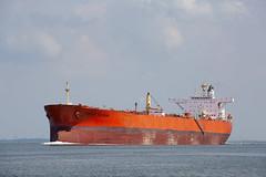 AEGLE TUCSON (angelo vlassenrood) Tags: ship vessel nederland netherlands photo shoot shot photoshot picture westerschelde boot schip canon angelo walsoorden aegletucson tanker