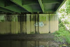 Cats (NJphotograffer) Tags: graffiti graff new jersey nj bridge cats ckd void ldz crew