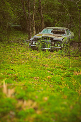 Down From Disgrace (Wayne Stadler Photography) Tags: preserved overgrown retro vintage rustographer 70s abandoned classic cougar derelict ford vehiclesrust rusty junkyard georgia oldcarcity rustography automotive white