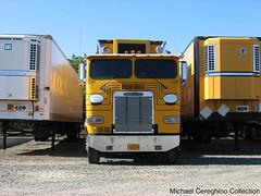 Willamette Egg Farm Freightliner FLA Cabover, Truck# C37 (Michael Cereghino (Avsfan118)) Tags: willamette egg farm freightliner fla coe cabover cab over engine truck tractor semi