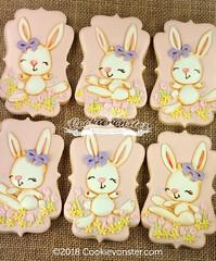 Bunnies 2018 (Cookievonster) Tags: cookievonster cookieart customcookies decoratedcookies bunnies cute rabbit pastel pink easter