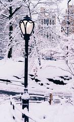 Let the light always shine for you (RomanK Photography) Tags: centralpark landscape manhattan nyc newyorkcity light lightpost morning snow snowstorm sonyalpha winter
