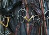 Harnachement... (Pi-F) Tags: harnais bride cheval équitation mors rênes corde cuir métal anneaux sangle sport texture
