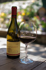 Los Gatos Wine Walk-4 (rachelle.haun) Tags: losgatos winewalk wine sunshine spring winery event