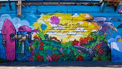 IMGP9331 New Graffiti Ponte delle Milizie (Claudio e Lucia Images around the world) Tags: murales streetart street graffiti tag milano navigli pontemilizie arte art wall paintedwall sigma sigma1020 pentax pentaxk3ii