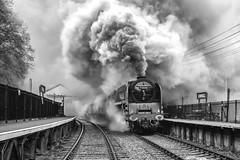 The Power of the Duke  -   B/W Version (photofitzp) Tags: 71000 cvr dukeofgloucester railways riddles russhillierphotocharter smoke steam locomotives