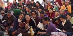 Tibetan Buddhism, Tibet 2017 (reurinkjan) Tags: tibetབོད བོད་ལྗོངས། 2017 ༢༠༡༧་ ©janreurink tibetanplateauབོད་མཐོ་སྒང་bötogang tibetautonomousregion tar ütsang lhasa jokhang lhadentsuglakhang jowokhang ཇོ་ཁང་ tibetanpeopleབོད་མིbömi བོད་འབངསbömbang thewildfolksoftibetབོད་སྲིནbösin tibetanpeopleབོད་རིགསbörik