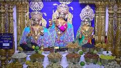Radha Krishna Dev Rajbhog Darshan on Fri 20 Apr 2018 (bhujmandir) Tags: radha krishna dev lord maharaj swaminarayan hari bhagvan bhagwan bhuj mandir temple daily darshan swami narayan rajbhog