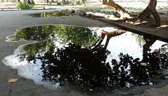 Poça (Rctk caRIOca) Tags: centro aterro do flamengo rio de janeiro