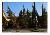 Dead Ted Tree (TooLoose-LeTrek) Tags: detroit teddybear rip memorial tree dead urbandecay