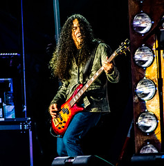 Mike Inez of Alice in Chains @Gröna Lund, Stockholm (hakandincer1) Tags: live music rock grunge alice chains aliceinchains stockholm gröna lund performance stage lights motion musician