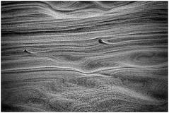 Grains of Sand (johnnywyoming) Tags: dunes sand blackandwhite bw canon50d florenceoregon abstract dark light swirls texture grains