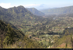 View from Mount Penanjakan, Bromo-Tengger-Semeru NP, Java, Indonesia (JH_1982) Tags: mount penanjakan pananjakan cemoro lawang view aussicht king kong hill valley mountain mountains landscape nature scenery scenic gunung bromo tengger semeru taman nasional crater krater np national park pn parque nacional nationalpark bromotenggersemeru бромо тенгер семеру 布羅莫火山 ブロモ山 브로모산 fields agriculture java jawa 爪哇岛 ジャワ島 자와섬 ява indonesia indonesien indonésie 印度尼西亚 インドネシア 인도네시아 индонезия