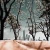 wrapped! (m_laRs_k) Tags: nyc nj usa skyscrapers hss 7dwf freestyle lightroomed omd olympus prime 17mm ньюйо́рк 纽约