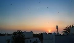 End of the day (KPPG) Tags: sunmoonorstars 7dwf ctt sunset agadir africa afrika morocco marokko sun