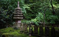 Mystic place in Japan (Andreas Mezger - Photography) Tags: statue street forest green nature bokeh 14 nikon 50mm asia travel kamakura journey bamboo