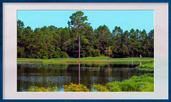 Golf Framed  DSC_0024 (Mike Pesseackey (UAGUY1)) Tags: golf golfcourse framed art artprints photoshop nikon experimntal lakes landscapes green trees water lake nature usa