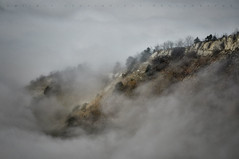 Storm in the mountains (Дмитрий Овчинников) Tags: landscape rock mountain tree nature travel season autumn color scenics tranquil forest sky fog cloud background mist foggy outdoor ngc