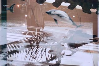 Jaione eta baleen hezurrak