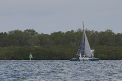 LOX_3737 (Lox Pix) Tags: australia queensland brisbanetogladstone yachtrace catamaran trimaran 2018 bossracing multihull loxpix moretonbay shorncliffe cabbagetreecreek rudder aground sailing