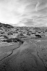 Salt Creek (edwardcgonzales) Tags: fuji fujigw690 gw690 texasleica deathvalley nationalparks dvnp landscape kodak tmax tmax400