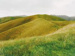 Grasslands (Costa Rica Bill) Tags: vsco minimal minimalism landscape