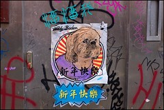 Teddy's dogs - DSCF0790a (normko) Tags: london west end graffiti street art teddy baden dog pasteup poster sticker chinatown