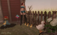 Adayonthefarm (♥Savvy Quinn♥) Tags: sass pinkfuel country duck redhead girl sexy woman catwalilly comingsoon evilbunnyproductions imitation jian lootbox maitreya mooh ohmygacha thedarkside truthhair vtwins newevent secondlifeblogging secondlifeevent eventsinsecondlife eventsinsl secondlifeevents farm