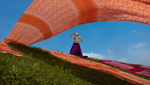 Batik in Wind