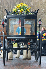 Carriage arrives (James O'Hanlon) Tags: sir ken dodd sirkendodd kendodd funeral cathedral anglican liverpool liverpoolcathedral anglicancathedral stars knotty ash knottyash squire legend comedy