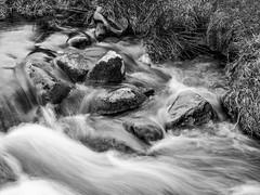 NB-19.jpg (neil.bulman) Tags: countryside longshawestate longexposure peakdistrict nature nationalpark derbyshire longshaw flowingwater rocky water flowing rocks derbyshiredalesdistrict england unitedkingdom gb