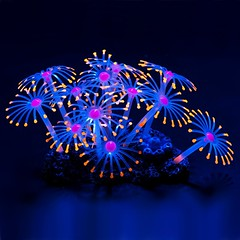 Glowing Artificial Coral Plant Aquarium Ornament (mywowstuff) Tags: gifts gadgets cool family friends funny shopping men women kids home