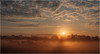 Foggy Sunrise_1004738P (uwe_cani) Tags: rur nebel fog sonnenaufgang sunrise sonne sun gegenlicht backlight baum tree bäume trees wolken clouds panasonic g9 landschaft landscape himmel sky