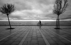 on the shore (Dan-Schneider) Tags: streetphotography street silhouette sky shore sea clouds candid composition blackandwhite bw monochrome mood minimalism schneider fuji fujix frame tree travel trip atmosphere