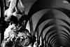 Carnevale Venezia 2017 - Dino Cristino (242) (Dino Cristino) Tags: carnevale carnevalevenezia venicecarnival venezia nikonphoto nikon primopiano portrait dinocristino eventi maschere maschereveneziane mask colors venicelagoon venice veneto momenti magicmoments