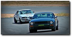 My Former Track Group (SoCal Brian's Page) Tags: mustang bullitts racing trackday willowsprings cocoa